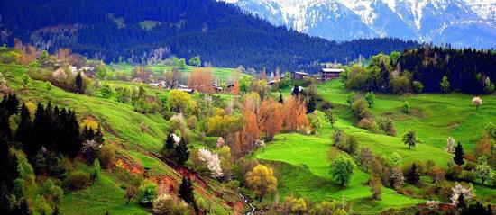 عکس از منظره ی زیبا و بکر طبیعت پرست