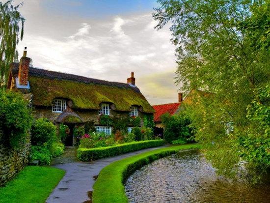 عکس از خانه ی زیبا و سرسبز شده