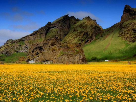 عکس از منظره جالب کوه سرسبز و زیبا