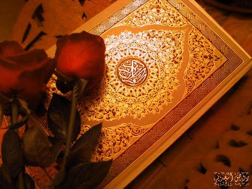 هرشب با قرآن , چه کسانی از حیوانات بدترند