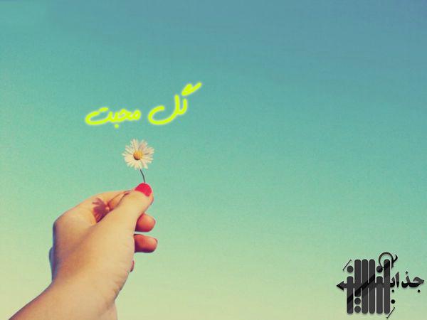 عکس گل زیبای محبت